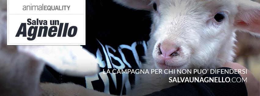 Sito Ufficiale della campagna 'Salva Un Agnello'