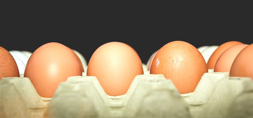 """Perché negli USA è vietato fare pubblicità alle uova con soldi statali descrivendole come """"salutari, sicure o nutrienti"""""""