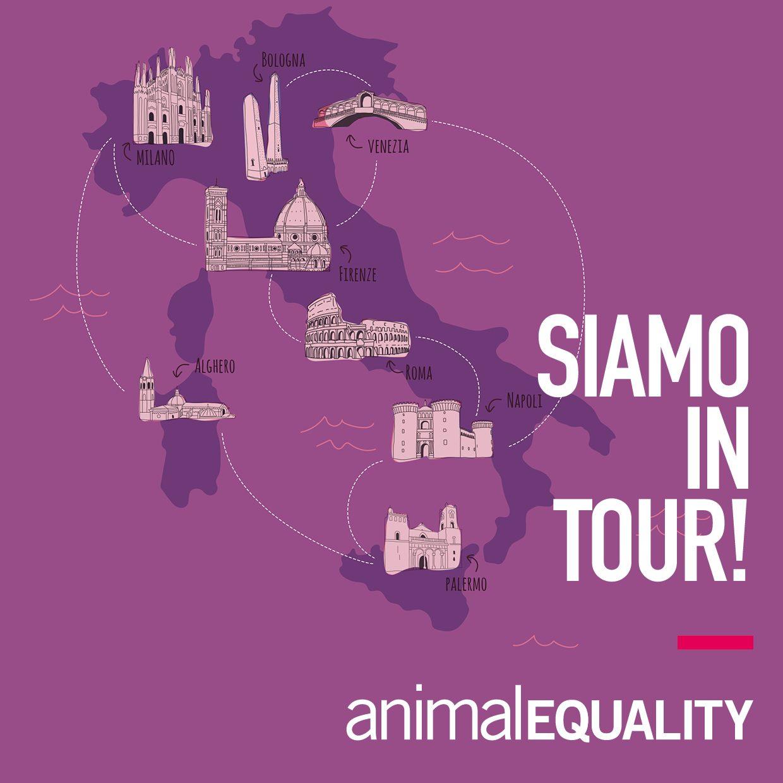 SIAMO IN TOUR. FB IG