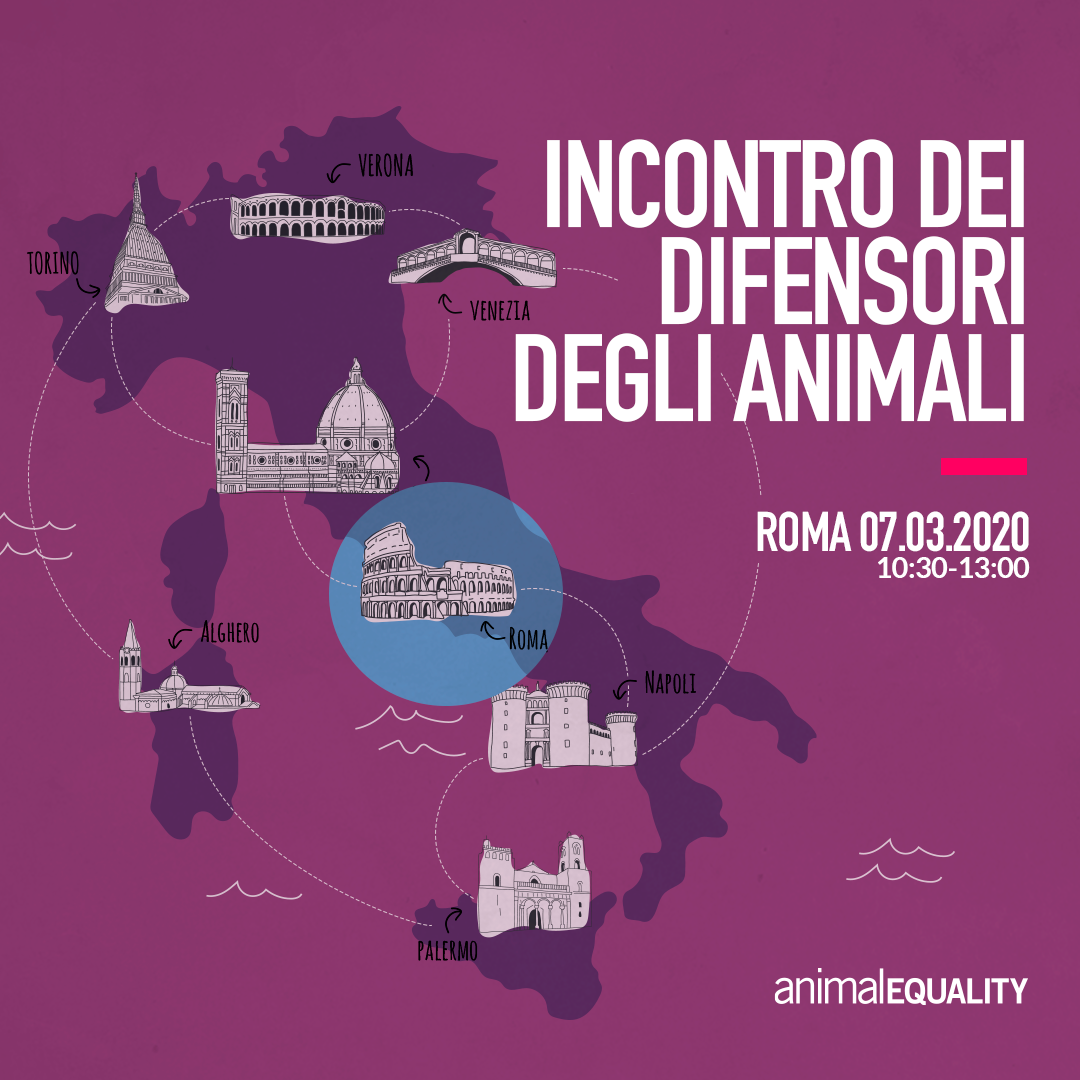 instagram_IT_tour_Roma