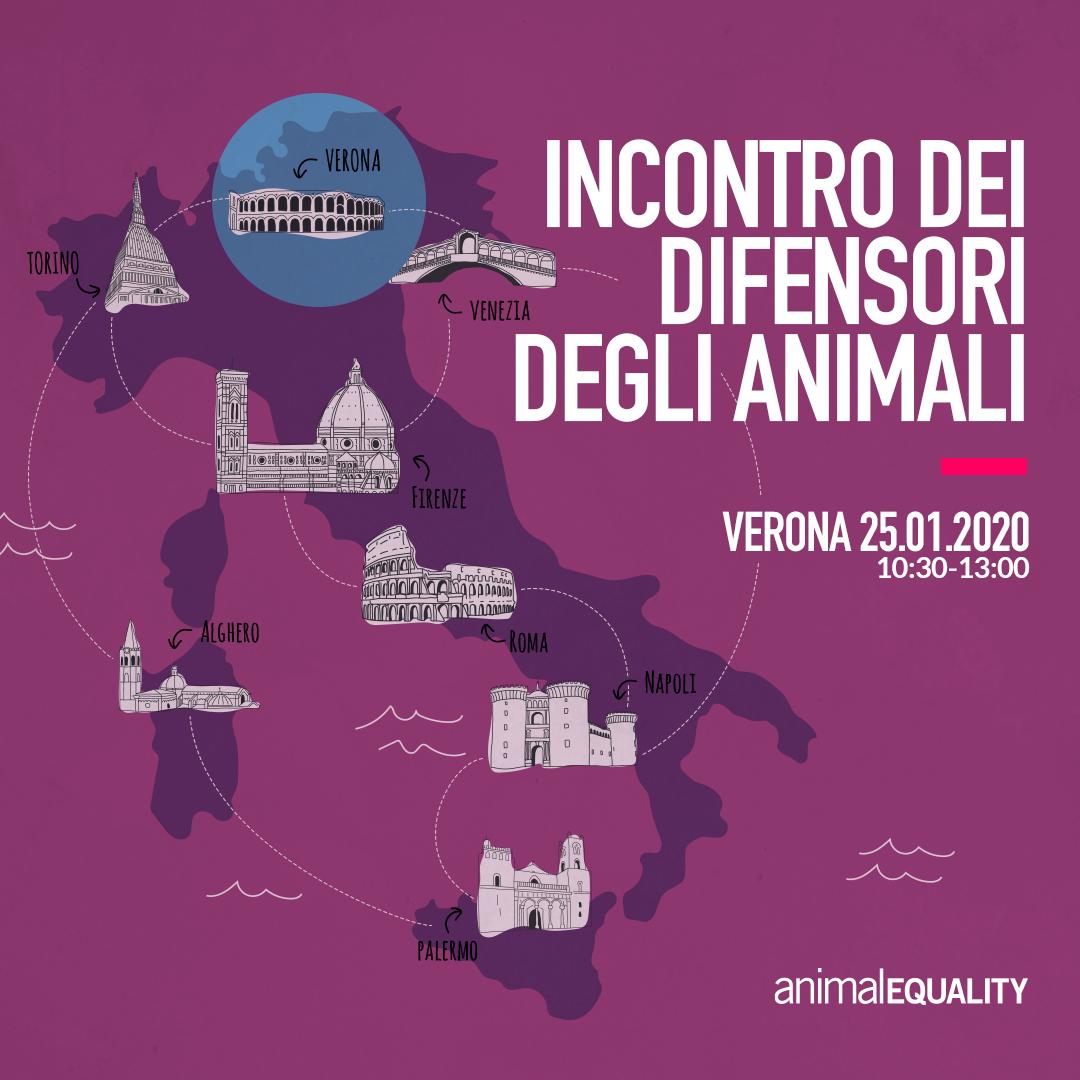 instagram_IT_tour_verona