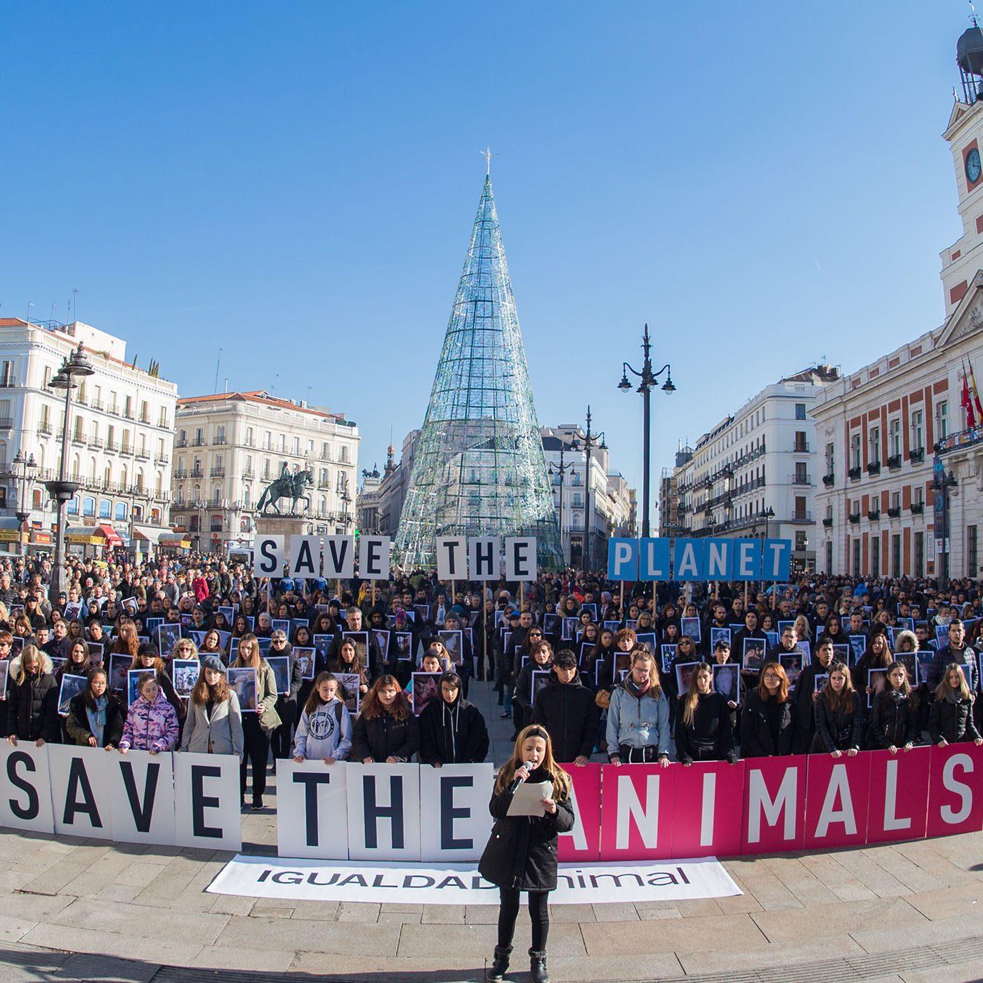 attivismo animali, giornata diritti animali