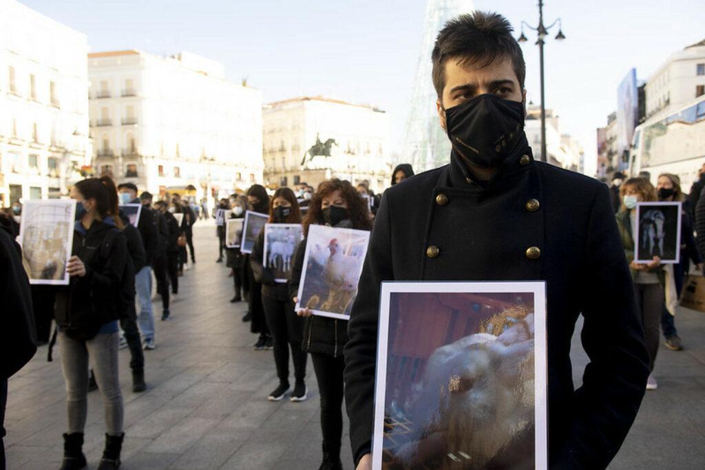 protesta animalisti animali
