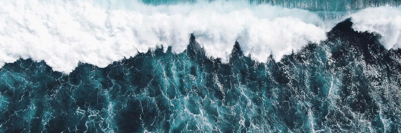 seaspiracy netflix documentario pesca