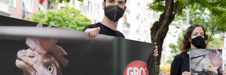 Gros proteste